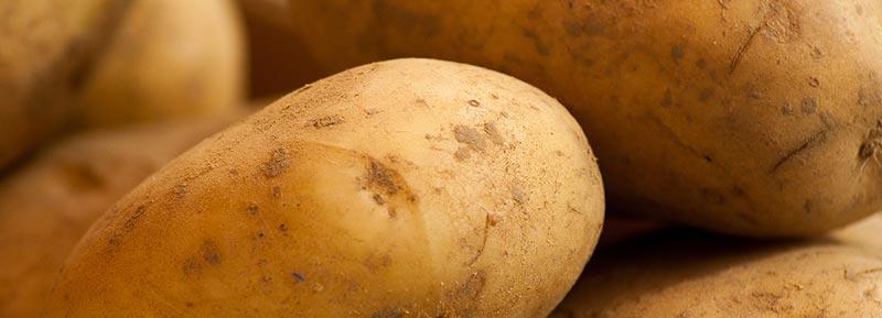 Gros plan d'une photographie de pommes de terre, aliments riches en fibres alimentaires