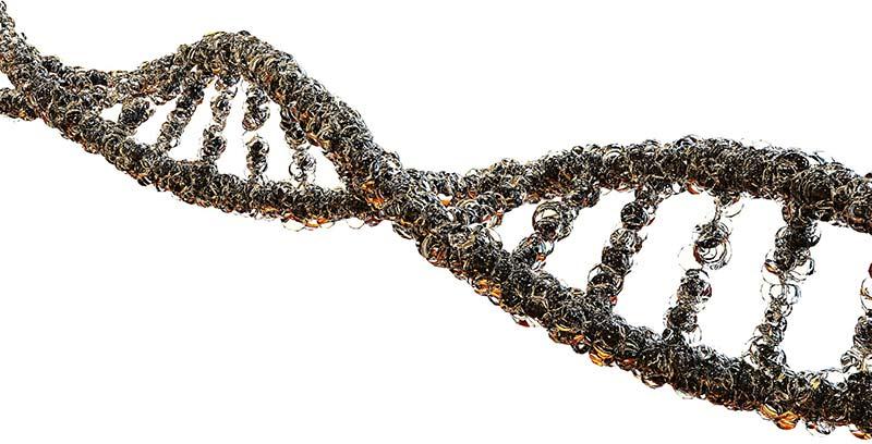Illustration d'un ruban d'ADN composé de bulles de minéraux, d'acides aminés, d'acides gras et d'oligo-éléments.
