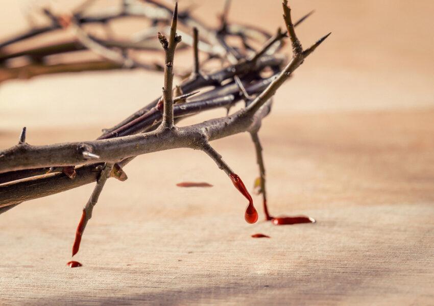Il preziosissimo sangue di Gesù Cristo dagli scritti di suor Antonietta Prevedello