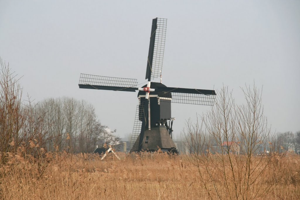 Molen-vlietmolen-lexmond-Regionaal Uitgelicht