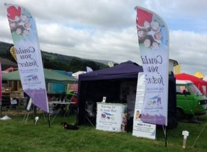 Fostering Information stand at Okehampton Show