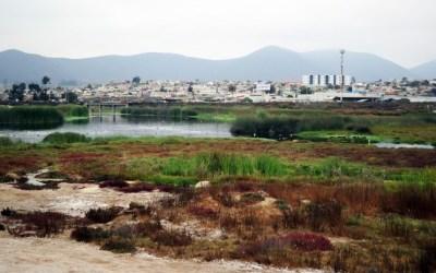 Celebran el día mundial de la Tierra en Coquimbo