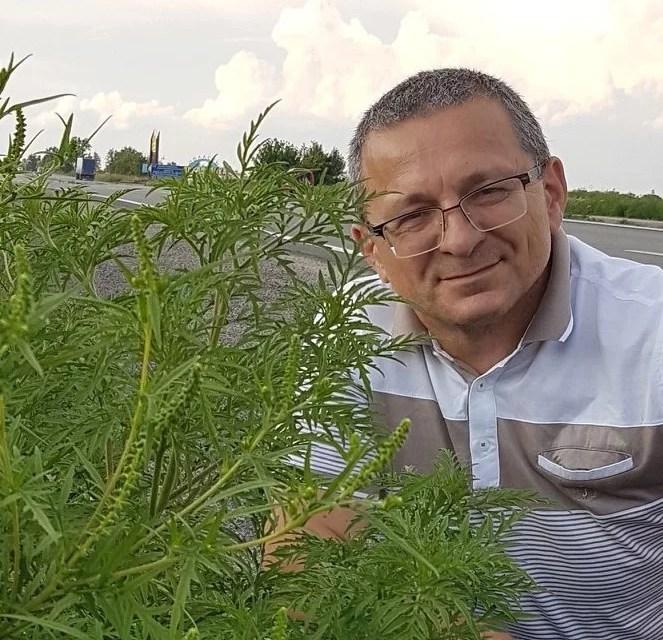 У Запоріжжі створять інтерактивну «карту амброзії», яка допоможе астматикам уникати місця локації карантинної рослини
