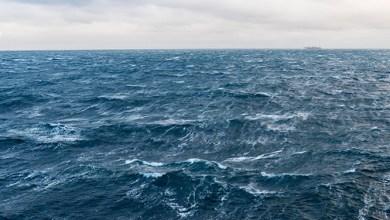 Photo of Duik in het zeeonderzoek van Delta tot Diepzee