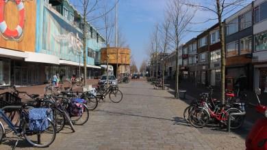 Photo of Bomen snoeien in de Beatrixstraat