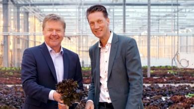 Photo of Rabobank verlengt partnerschap met Seed Valley