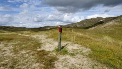 Photo of Wandelen door afwisselende landschappen in Den Helder