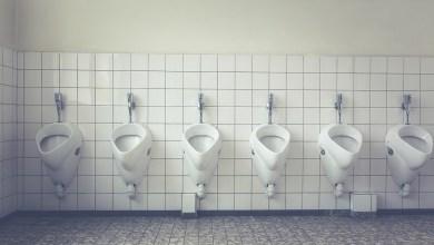 Photo of Te weinig openbare toiletten in Den Helder