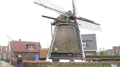 Photo of Molen de Hoop vervangt haar balken (video)