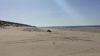 Photo of Texelaars blijven weg van het strand