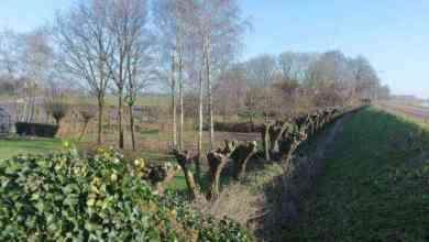 Photo of Toertocht door Midden-Kennemerland
