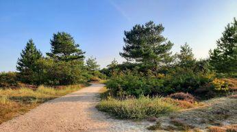 Het is goed vertoeven in dit rustige natuurgebied.