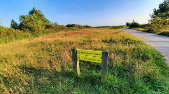 Er zijn een korte en een lange wandelroute, voor elk wat wils!