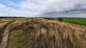 Een stuk duinlandschap volgt na de polder