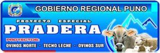 Proyecto Especial PRADERA