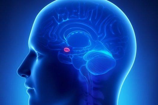 human head in uv illumination