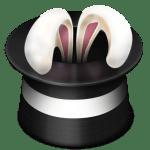 Conejo del tribunal de Colombia