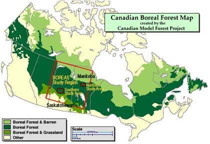 It is the largest of all the land biomes. The Registry Of Nature Habitats Boreal Forests