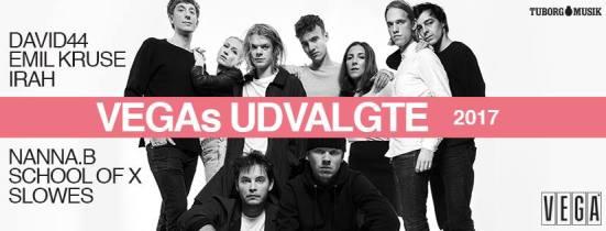 VEGAs Udvalgte 2017 Regnsky