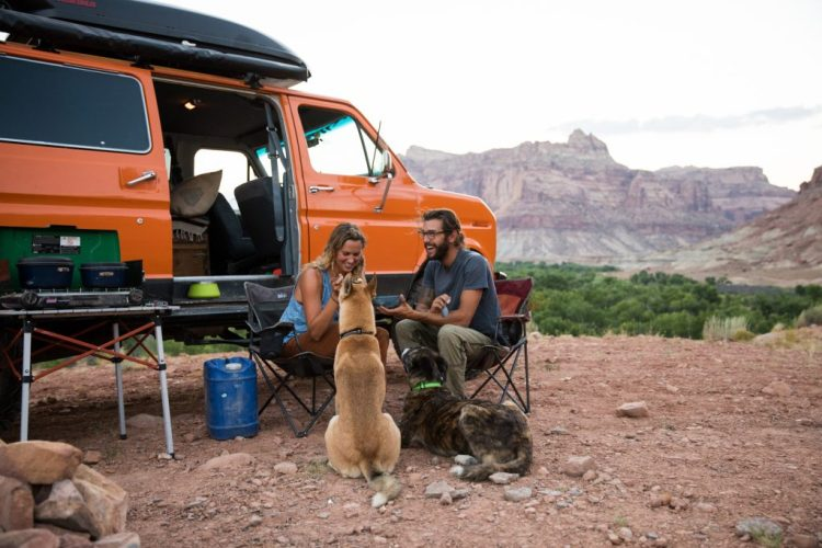 dog and owners car camping