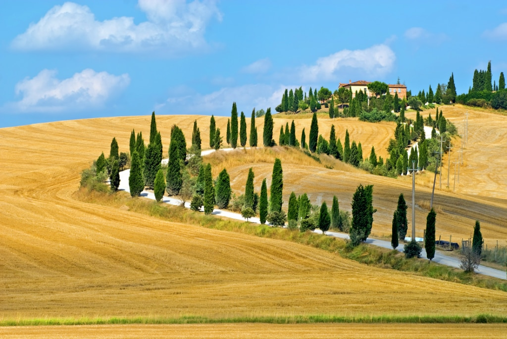 The rural Tuscany countryside.