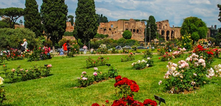 https://i1.wp.com/www.reidsitaly.com/images/lazio/rome/sights/roseto-comunale-long.jpg?resize=728%2C351