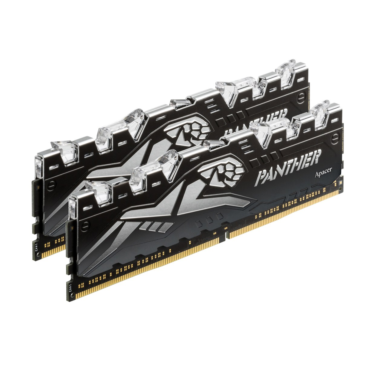 PANTHER RAGE DDR4-2_LOW