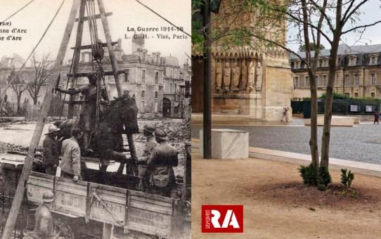 Désinstallation de la statue de Jeanne d'Arc sur le parvis de la Cathédrale