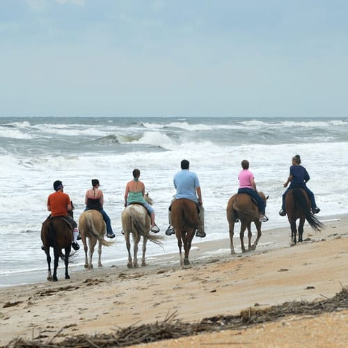 horse ride en the beach