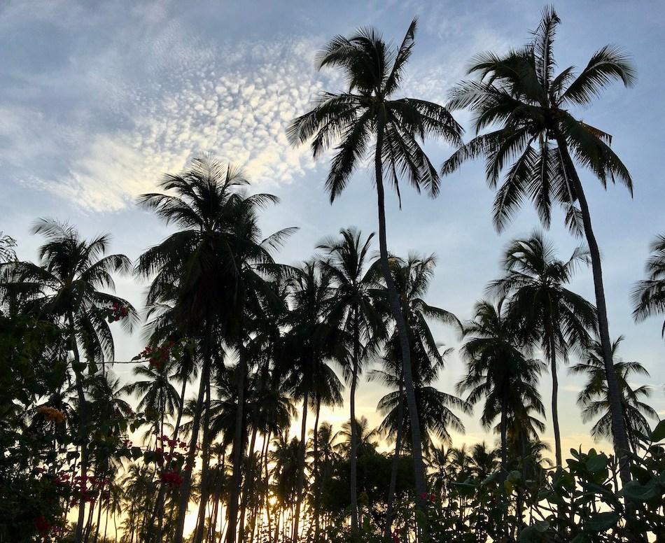 Digital detox vakantie
