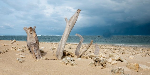 The Beach of Banda Aceh