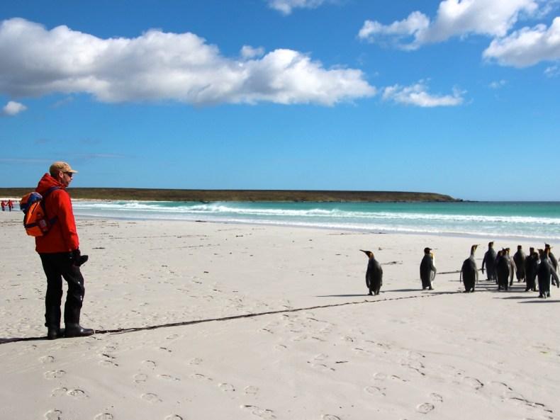 Seereise in die Antarktis: Eine Welt aus Eis und Licht
