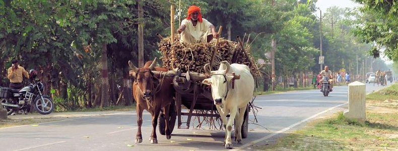 Gründe für extreme Armut in Indien