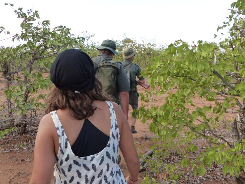Zu Fuß im Krüger Nationalpark