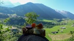 bergwaldprojekt-schweiz-val-medel - 18