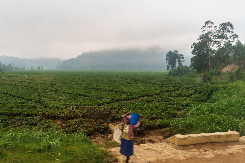 Unterwegs nach Ruanda