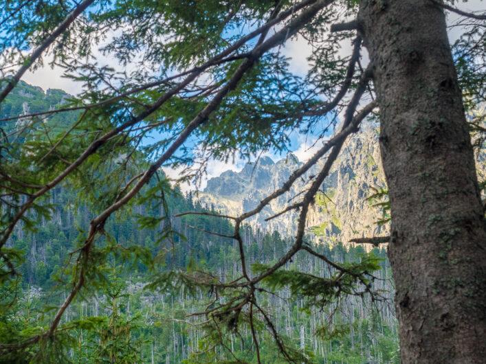 Uitzicht vanaf het Kühlbachtal