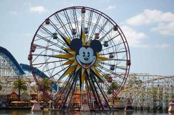 Disney California Adventure 8