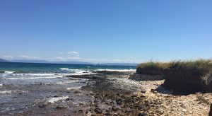 Strand bei Medulin (F: Reisekompass)