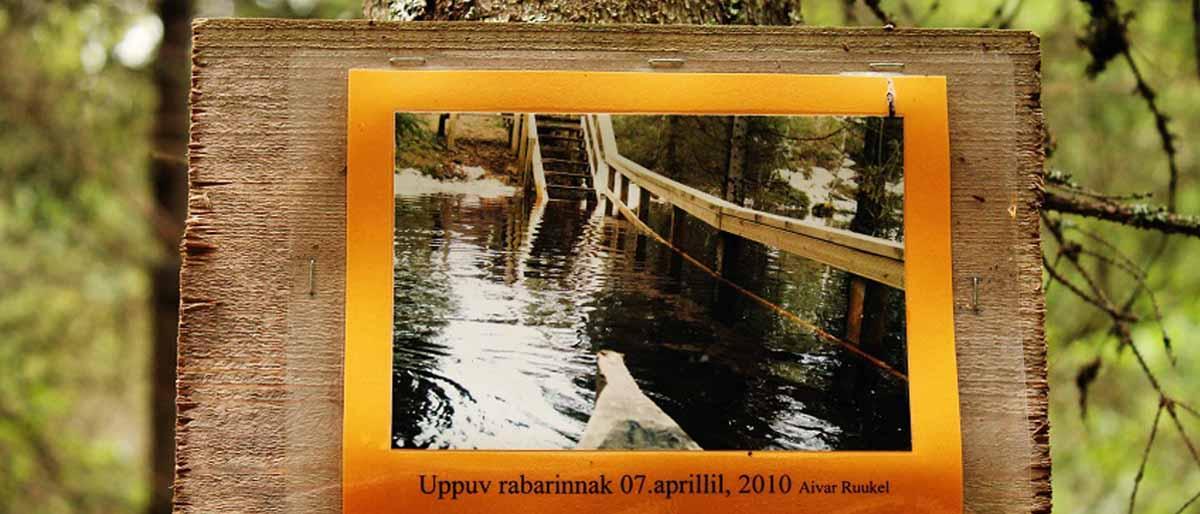 Soomaa Nationalpark in Estland