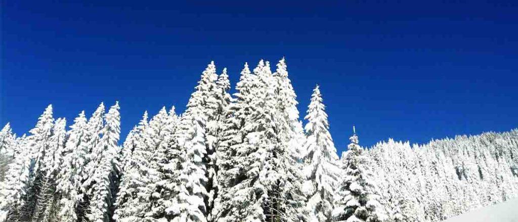 Nachhaltiger Skiurlaub