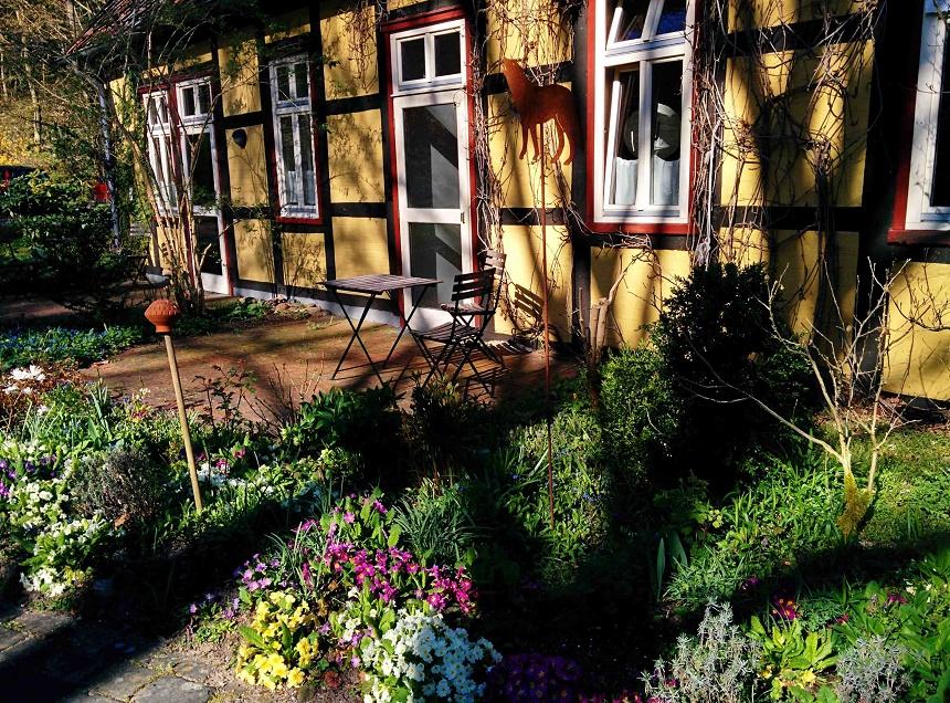 Blumen- und Kräuterparadies rum ums Haus herum
