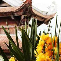 Vietnam von Norden nach Süden oder umgekehrt
