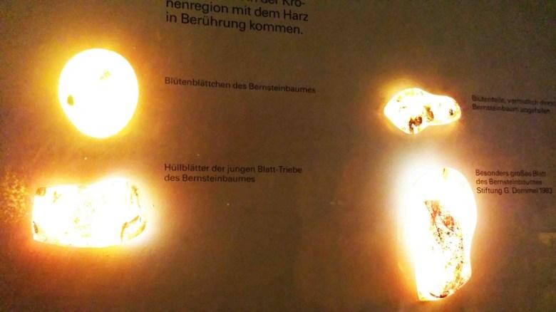 Museum am Löwentor