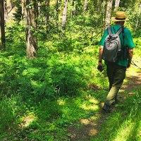 Wolfswanderung Wendland