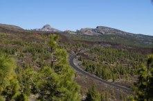 Passtrasse zum Pico del Teide - Teneriffa - reisenmitkids.de