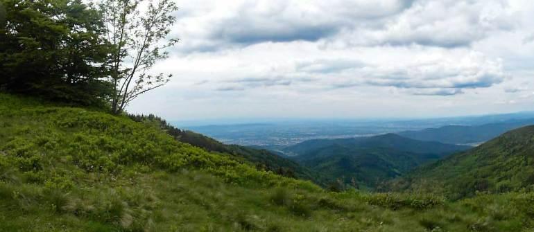 Schauinsland Freiburg