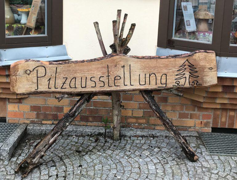Pilzaustellung in Wismar