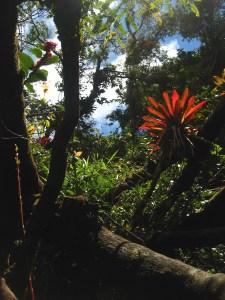 Nationalpark Volcán Poas