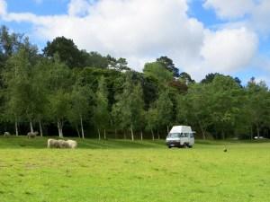 McLaren Falls Camping Ground